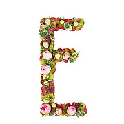 Capital Letter E Part of a set of letters, Numbers and symbols of the Alphabet made with flowers, branches and leaves on white background