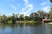 Paddle Boat Rentals at Irvine Regional Park