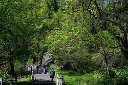 Despite the state-wide stay-at-home order still in effect, spring weather draws hundreds to exercise outdoors in Fairmount Park and on East River Drive, in Philadelphia, PA, on April 28, 2020.