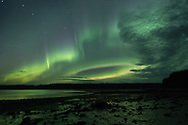 The aurora borealis (northern lights) during low tide with the Big Dipper (Ursa Major) in the sky