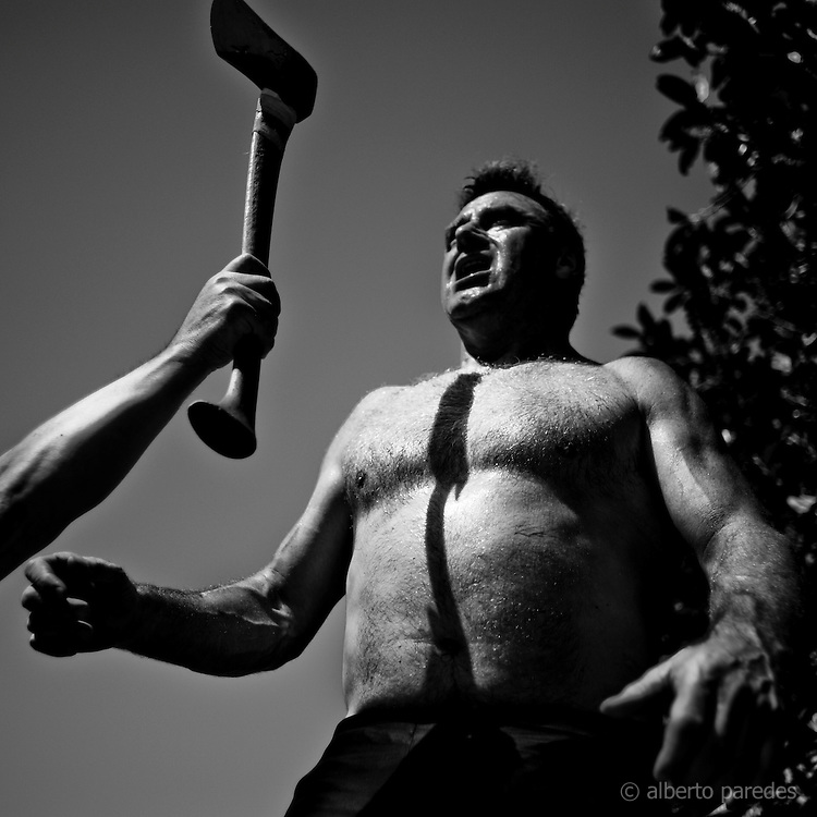 Jose Mari Olasagasti, wood cutter or aizkolari in Basque language. He is training in his farm in Igeldo mountain, near San Sebastian. Basque rural sports (Herri Kirolak in basque language) are rooted in traditional lifestyles, mostly farmer occupations of the Basque Country, in Northern Spain. Nowadays they have transform themselves into sports based in strenght and skill. Stone lifting and wood chopping are the most popular.