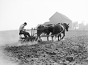 9969-2712. Discing being done by George Trachsel on his farm in  Beaverton. October 22, 1936. (discing breaks up the turned soil and sod resulting from plowing)