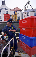 The prawn is then put into bigger containers that will then be taken ashore by Jim and sold in the market that day in Eyemouth.  After returning home to sleep the daylight hours away, Jim and John will return again to Eyemouth that night for another 15-hour shift.