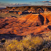 Low light at sunset brings out the colors of the Painted Desert in the Petrified Forest National Park, near Holbrook, Arizona.