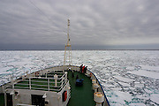 The Greenpeace ship Esperanza in pack ice in the Southern Ocean, while searching for the Japanese whaling fleet