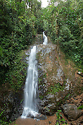 Water fall, Cloud Forest, Mashpi Reserve, Distrito Metropolitano de Quito, Ecuador