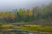 The Escarpment cliffs above the Big Carp River Bridge were hidden in the thick fog.<br />