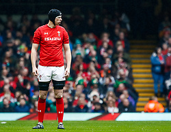 Adam Beard of Wales<br /> <br /> Photographer Simon King/Replay Images<br /> <br /> Six Nations Round 5 - Wales v Ireland - Saturday 16th March 2019 - Principality Stadium - Cardiff<br /> <br /> World Copyright © Replay Images . All rights reserved. info@replayimages.co.uk - http://replayimages.co.uk