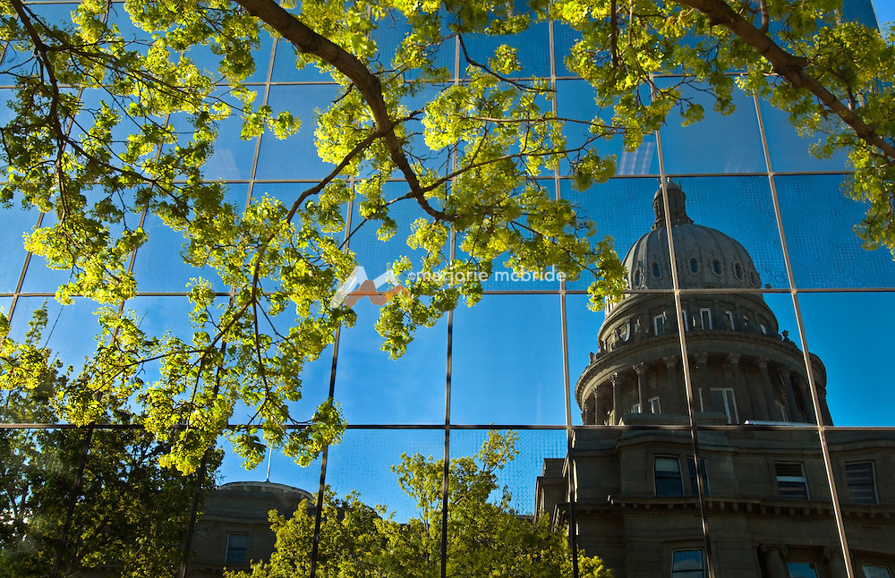 Bright green spring trees reflect with the Capitol building in downtown Boise, Idaho.