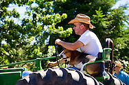 Man and beagle on tracor during the strawberry festival parade on vashon island, washington