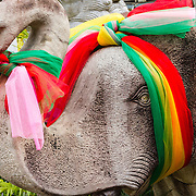 THA/Bangkok/201607111 - Vakantie Thailand 2016 Bangkok, versierselen op een Olifant als offer