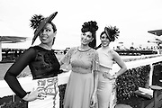 28/07/2014 Galway girls Denise Manning,  Sophie and Daniella Small at the first evening of the Galway Summer Racing Festival at Ballybrit in Galway City. Photo:Andrew Downes