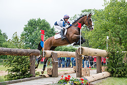 Harwood Louise (GBR) - Mr Potts <br /> Cross Country <br /> CCI4*  Luhmuhlen 2014 <br /> © Hippo Foto - Jon Stroud