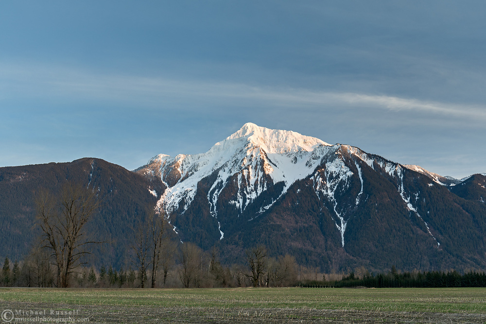 A cornfield in Agassiz with Mount Cheam (Lhílheqey) in the background at sunset. Mount Cheam is a prominent mountain peak in the Fraser Valley of British Columbia. Located in the Canadian Cascade Range, the peak reaches 2104 meters/ 6903 feet in elevation.   Photographed in Agassiz, British Columbia, Canada.
