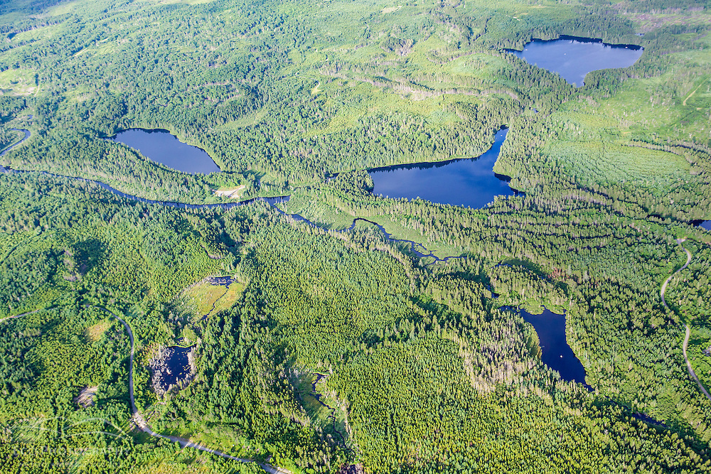 Durgin Pond (middle left), Little Berry Pond (middle right), and Big Berry Pond (top), in the Cold Stream watershed in industrial timberland in Maine's Northern Forest.