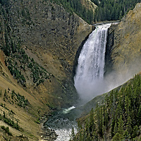 YELLOWSTONE NATIONAL PARK, Wyoming. Lower Yellowstone Falls from Lookout Point. Yellowstone River.