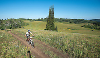 Grand Targhee Resort's mountain bike trail system is a great outing for a day or weekend on the west slope of the Teton Range.