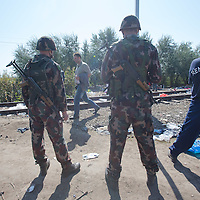 Army soldiers and police officers stand guard as illegal migrants cross the border between Serbia and Hungary near Roszke (about 174 km South of capital city Budapest), Hungary on September 14, 2015. ATTILA VOLGYI
