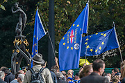 Veterans for Europe - People arrive and walk through an autumnal Green Park - The People's Vote March For The Future demanding a Vote on any Brexit deal. The protest assembled on Park Lane and then marched to Parliament Square for speeches.