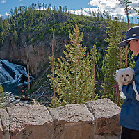 An elderly man and his dog look at Gibbon Falls in Yellowstone National Park, Wyoming.