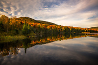 Beautiful morning light and calm water combine for a perfect reflection of autumn color at Noyes Poind, Groton State Forest, VT, USA