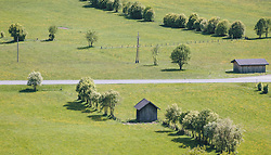 THEMENBILD - eine Straße durchquert saftige Wiesen auf denen Bäume und Heustadl stehen, aufgenommen am 08. Mai 2020, Bramberg, Österreich // a road crosses lush meadows with trees and haylofts on 2020/05/08, Bramberg, Austria. EXPA Pictures © 2020, PhotoCredit: EXPA/ Stefanie Oberhauser