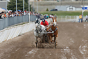 Participants compete in the 47th annual Chariot Racing World Championship, March 27, 2011, in Ogden, Utah. (Wild West Media Photo/Colin E Braley)