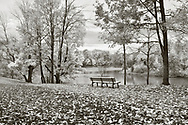 A walking path and park bench overlooking a lake on a rainy day in autumn, Sharon Woods, Southwestern Ohio, USA