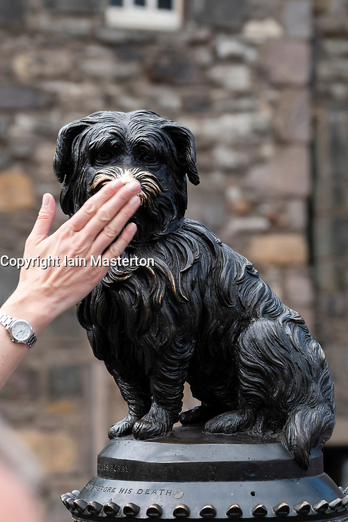 Tourist touches nose of statue of Greyfriars Bobby in Old Town of Edinburgh, Scotland, UK