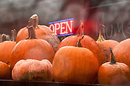 """Rain-drenched pumpkins look especially alluring on the display table. The """"Open"""" sign at a rural farm stand invites those passing by to stop for their annual fill of pumpkin orange. <br /> A painterly effect applied in post processing adds texture and enhances the dreamy, liquid atmosphere.<br /> <br /> For IMAGE LICENSING just click on the """"add to cart"""" button above.<br /> <br /> Fine Art archival paper prints for this image as well as canvas, metal and acrylic prints available here:<br /> https://2-julie-weber.pixels.com/featured/trough-the-window-julie-weber.html"""