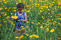 Vietnamese Child Playing in a Field of Flowers
