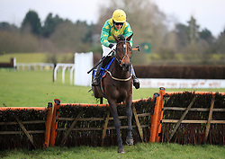 Lee Edwards riding Foresee during the 32Red.com Juvenile Hurdle at Market Rasen