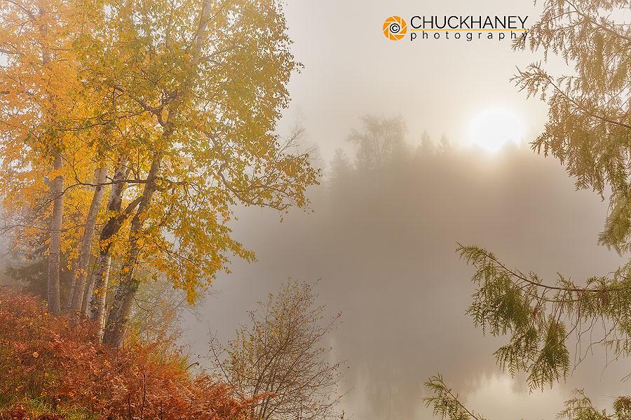 Foggy sunrise over the Slocan River in autumn  near Winlaw, British Columbia, Canada