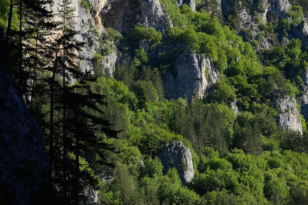 Trigrad gorge, Western Rhodope mountains, Bulgaria