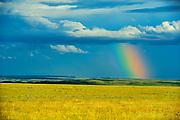 Rainbow and stormy sky over grasslands, Grasslands National Park, Saskatchewan, Canada