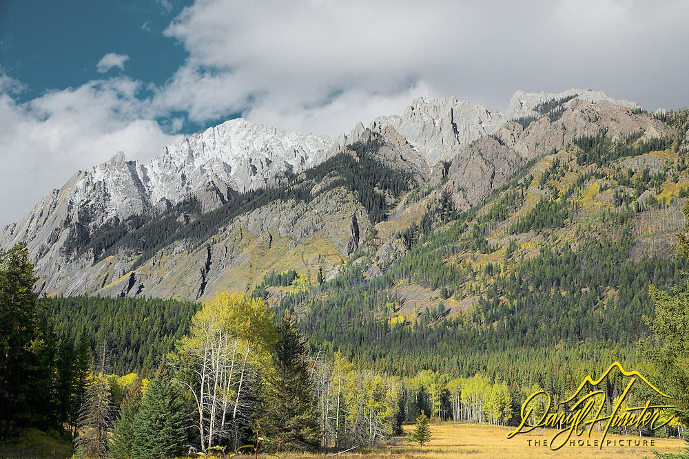 Hillsdale Meadow, Sawback Range, Autumn Color, Banff National Park
