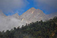 Mountainscapes in cloudy mist, in the humid montane mixed forest, Laba He National Nature Reserve, Sichuan, China