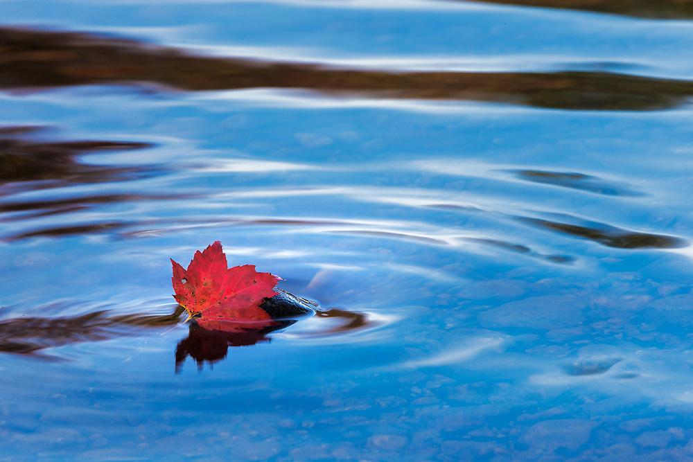 Autumn in Montpelier, Vermont, USA