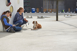 Two friends sitting in a playground with dog, Munich, Bavaria, Germany