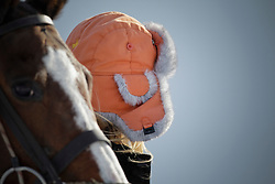 Match Germany - Switzerland<br /> St.Moritz Polo World Cup On Snow 2011<br /> © Dirk Caremans