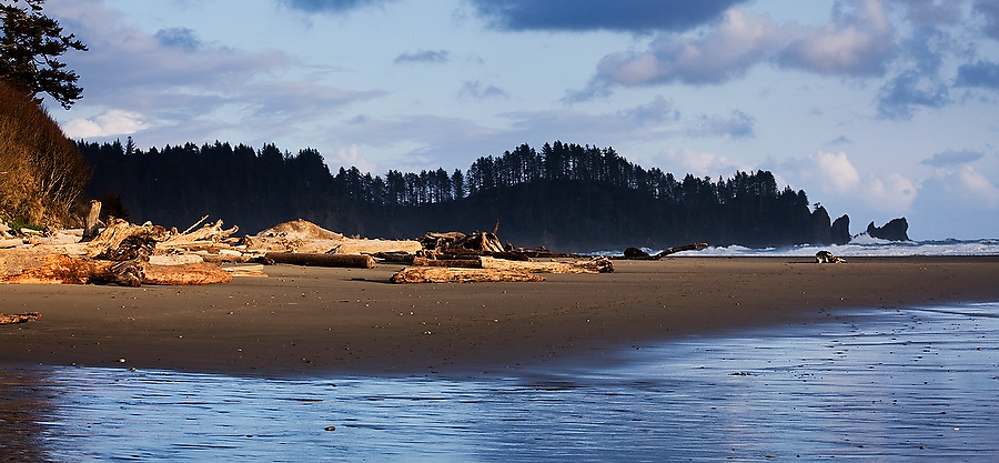 Unusual evening light highlights a pile of driftwood on Second Beach, Olympic National Park, Washington.