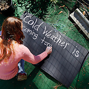 Jocelyn Driver, owner of Rose Dhu Nursery, Bluffton, writes in chalk on a chalkboard painted piece of wood for in front of her nursery expressing concern for young citrus and tropical plants due to  frost advisory in the county tonight at Rose Dhu Nursery on January 7, 2015.