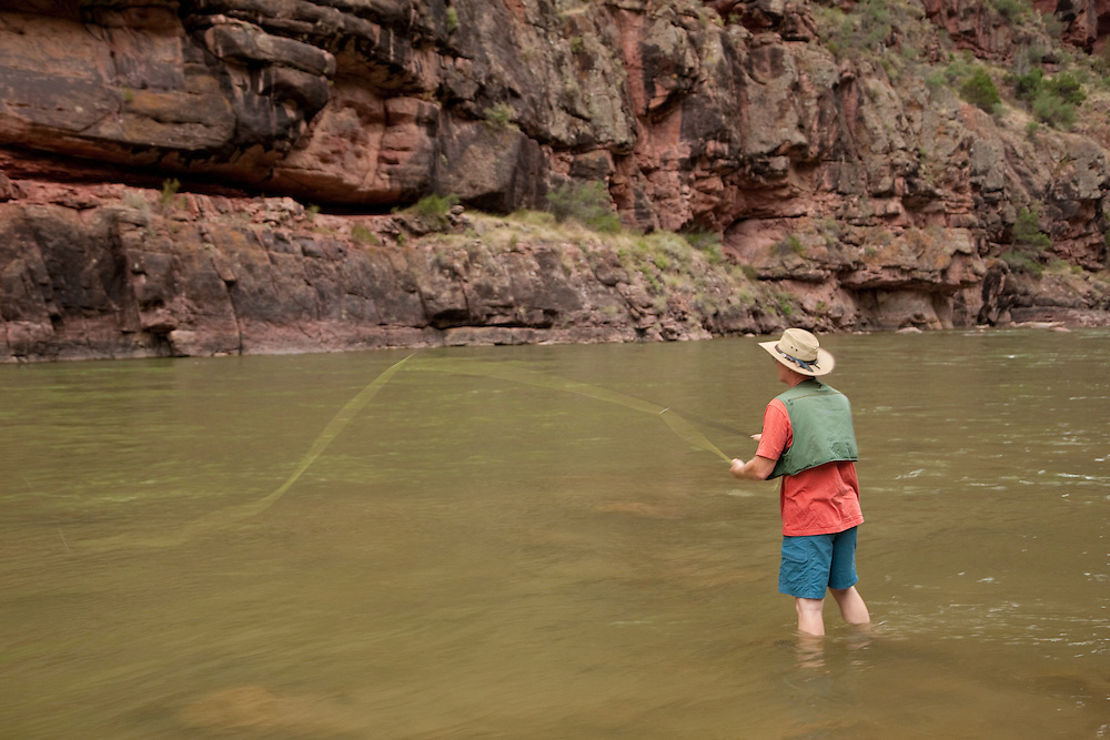 North America, United States, Colorado, Dinosaur National Monument, Green River (Gates of Lodore section), man fly-fishing.  MR