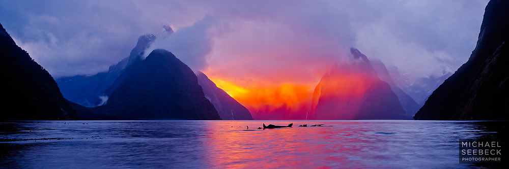 The last rays of sunset travel directly through Milford Sound, an occurrence which is only seen at most a few times per year.<br /> <br /> Limited Edition Print