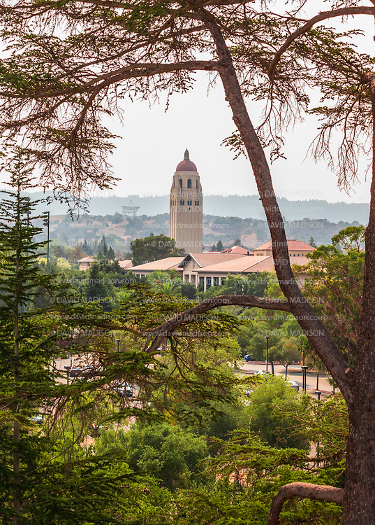 PALO ALTO, CA - SEPTEMBER 26:  A general view of the campus of Stanford University including Hoover Tower as seen from Stanford Stadium during an NCAA Pac-12 college football game between the Stanford Cardinal and the UCLA Bruins on September 26, 2021 at Stanford Stadium in Palo Alto, California.  (Photo by David Madison/Getty Images)