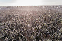 Aerial view of the snowy colorful forest of Muraste in Estonia.