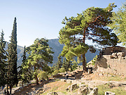 Greece, Delphi Landscape