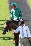 FOREST OF DEAN (8) ridden by Frankie Dettori and trained by John Gosden enter the Winners Enclosure after winning The Sky Bet Handicap Stakes over 1m 2f (£70,000)  during the Ebor Festival at York Racecourse, York, United Kingdom on 24 August 2019.
