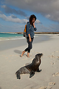 A young tourist nears a Galapagos sea lion(Zalophus californianus) on the beach of Espanola Island, Galapagos Archipelago - Ecuador. (fully released - 82010EXsP)
