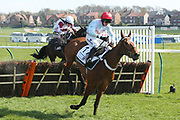 VERDANA BLUE (1) ridden by Connor Brace and trained by Nicky Henderson winning The Class 1 CPMS Scottish Champion Hurdle Race over 2m (£105,000) during the Scottish Grand National race day at Ayr Racecourse, Ayr, Scotland on 13 April 2019.
